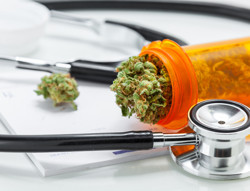 The Future of Medicine and How Cannabis Fits into That Future