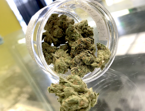 6 Things You Have in Common With Your Weed